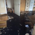 Carpet Cleaners in Daventry